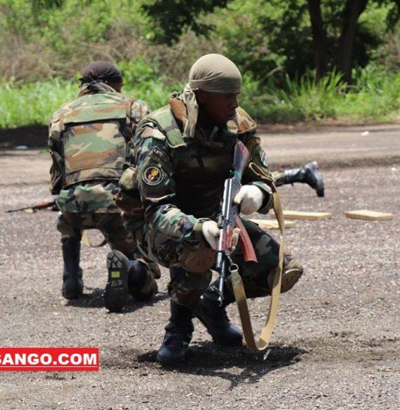 Centrafrique: le FPRC s'oppose au déploiement des FACA
