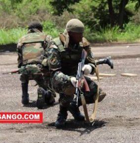 Centrafrique: l'UPC en ordre dispersée érige des barricades sur le chemin des FACA à Bambari