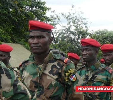 Centrafrique: le parlement ratifie l'accord de coopération militaire avec la Russie