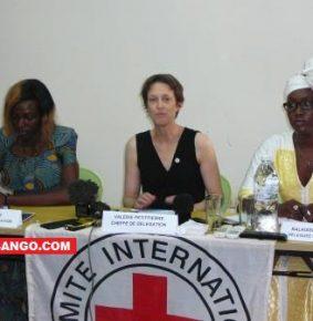 Centrafrique: en 2019, le CICR maintient son action sur la protection et l'accès aux soins de santé