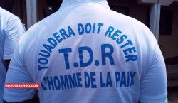 RCA : « Touadera Doit Rester », la naissance d'un comité de soutien au président Touadera