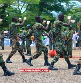 RCA: sortie des 343 soldats des forces spéciales formés par les Russes à Béréngo