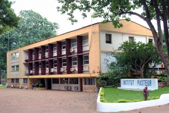 Centrafrique-Institut-Pasteur-Ndjoni-Sango