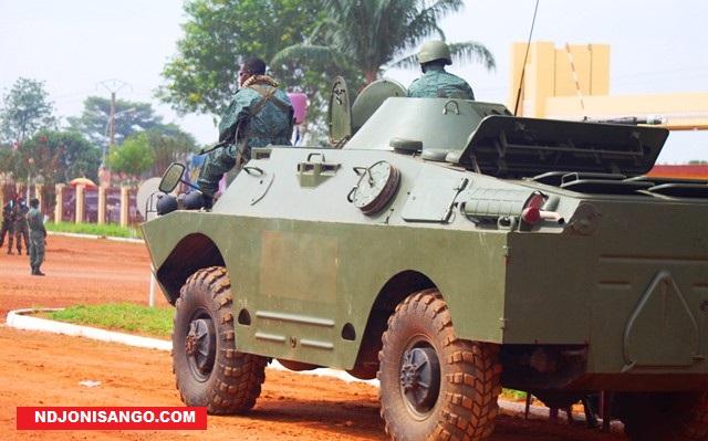 char-faca-ndjoni-sango-centrafrique